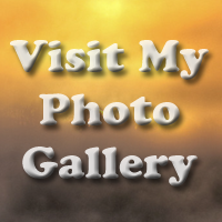 Visit my photo Gallery